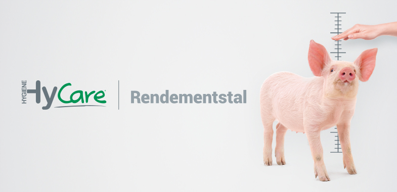 Hy-Care Rendementstal